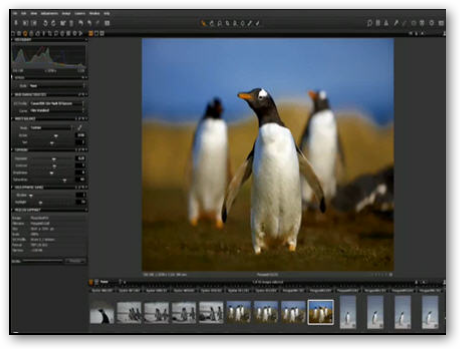 Capture One  6.1