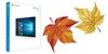 """Dnes vychází """"velká"""" podzimní aktualizace Windows 10. Jedná se spíše o Service Pack"""