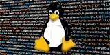 Nový Linux 5.8 je jedním z nejlepších, tvrdí jeho duchovní otec Linus Torvalds