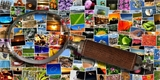 10 nejlepších aplikací na prohlížení fotek a obrázků pro Windows, Linux i macOS