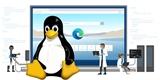 Na tohle tučňák určitě čekal: webový prohlížeč Edge pro Linux bude uvolněn v říjnu