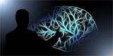 """U.S. Army investuje do neurovědeckého výzkumu. Touží po přístroji pro """"telepatickou"""" komunikaci"""