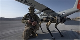 US Air Force testují hlídací robopsy. Budou střežit důležitá území a objekty