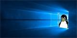 Co když chce Microsoft nahradit Windows Linuxem. Dokážete si to představit?