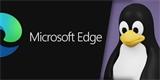 Tučňáci se konečně dočkali: Edge dorazil na Linux a my ho hned vyzkoušeli