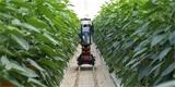 Zemědělci zanedbávají kybernetickou bezpečnost. Záškodník by jim mohl zničit úrodu přes zavlažovací systémy