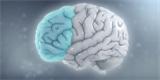 Poruchy soustředění a hyperaktivita jsou dědictvím z pravěku. Tehdejším lovcům ADHD svědčila