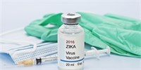 New Zica Vaccine: Works great in mice and monkeys
